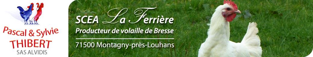 Poulet de Bresse Thibert